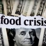 food_crisis-300x194