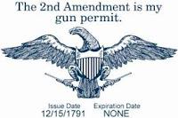 gun-confiscation-213