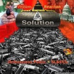 gun-control-dees