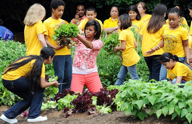 Is Michelle Obama 39 S Natural Food Campaign Designed To Hide The White House Attack On Organic