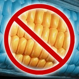 no-corn330-e1291645103556