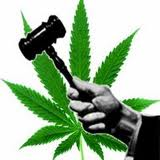 jury nullification weed (2)