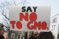 say-no-to-GMO-MillionsAgainstMonsanto-300x199