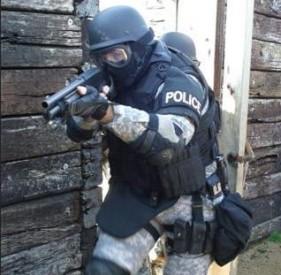 SWAT32-281x275