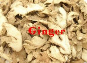 ginger-300x219