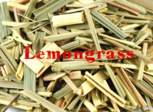 lemongrass-300x219