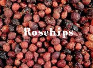 rosehips-300x219
