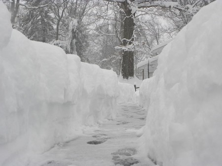 Snowpocalypse-Photo-by-E4117-450x337