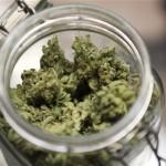 marijuana_2391703b