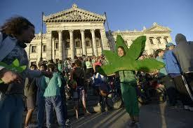 Uruguay marijuana