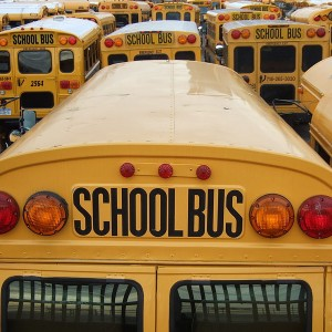 11-Reasons-To-Get-Your-Kids-Out-Of-The-Government-Schools-300x300