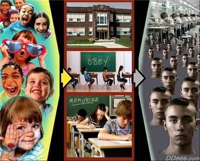 Dees_Education
