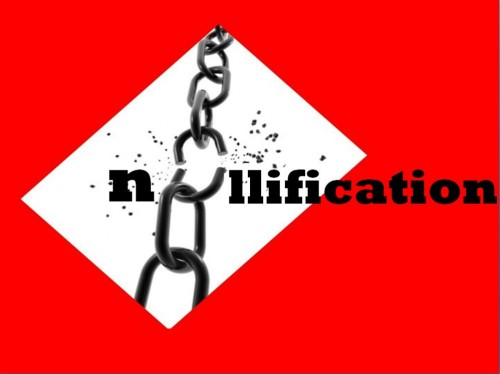 Nullififcation-500x374