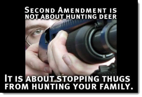 second-amendment-stop-thugs-hunting-your-family