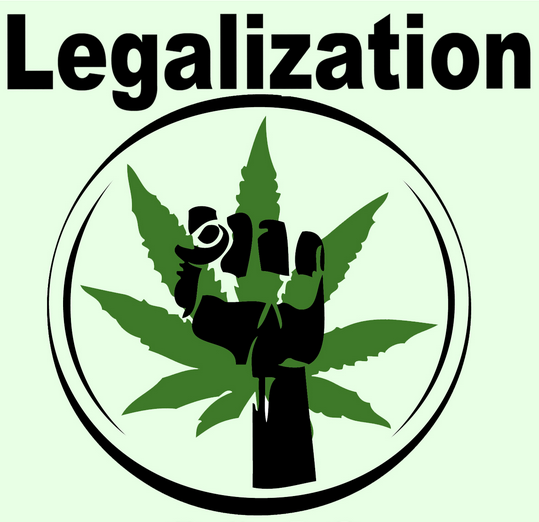 a study on legalization of marijuana and its medical uses Now support recreational legalization as  of marijuana research) to study marijuana's potential  known medical uses of marijuana is for.