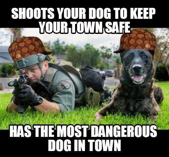 copdogshootingmeme