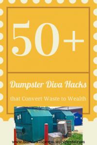 dumpster-diva