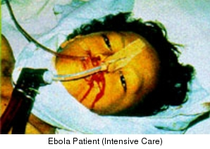 Minnesotan Patrick Sawyer Was One Flight Away From Becoming Patient Zero In A U.S. Ebola Outbreak. (updated 12.42 GMT)