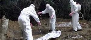 ebola-burying-dead-bodies1-890x395_c
