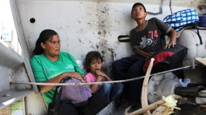 Nearly two-thirds of asylum requests by illegal immigrant children immediately granted