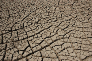 California on the Brink: 14 Rural Communities are Now Facing Total Water Depletion