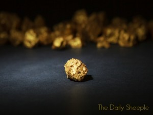 Closeup of big gold nugget