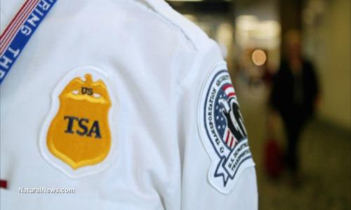 Editorial-Use-TSA-Agent-Airport-1
