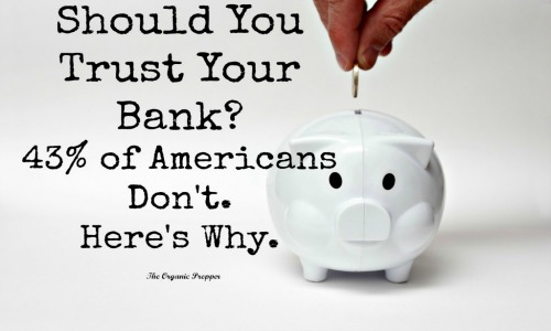 Here-is-why-43-percent-of-Americans-do-not-trust-the-bank-with-their-money-1024x683