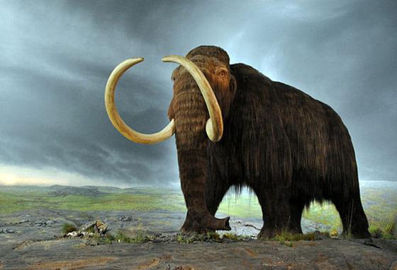woolly-mammoth-1