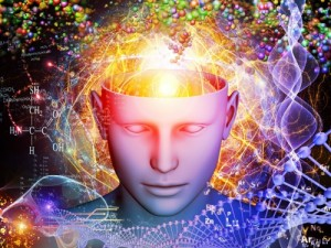 Humanity vs Insanity – Zen Gardner