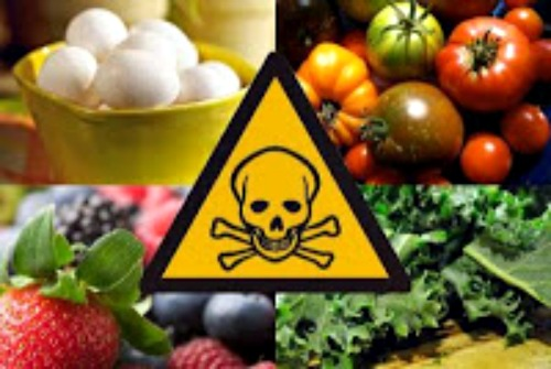 foodborne illnesses