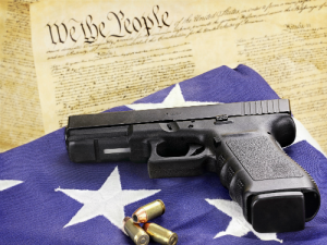 Court Rules That Illegal Aliens Have Second Amendment Rights