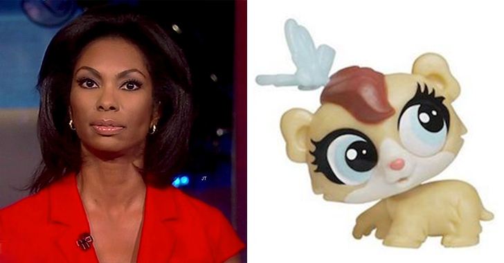 HarrisFaulkner-Idiot