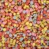 MDMA ecstasy drug article