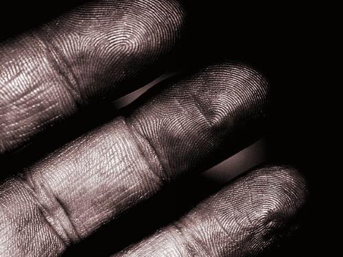 fingerprints wikimedia