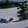 sierra nevada snow wikimedia