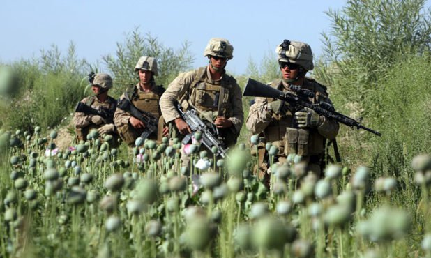US-troops-opium-field-Afghanistan