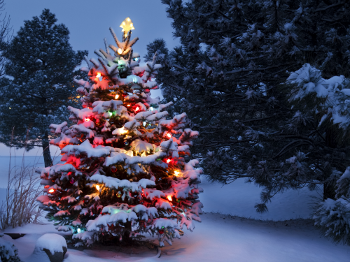 Students Sign Petition to Ban 'Racist' White Christmas Song | The ...