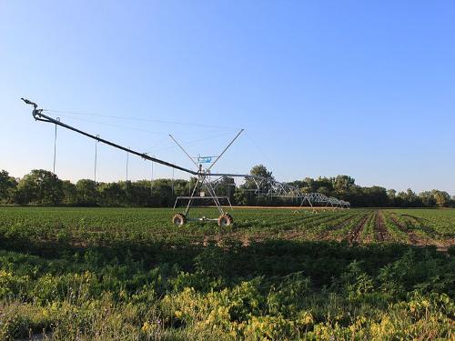 farm wikimedia