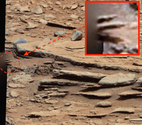 Is This Picture From Mars Proof of Alien Life... And Why ...