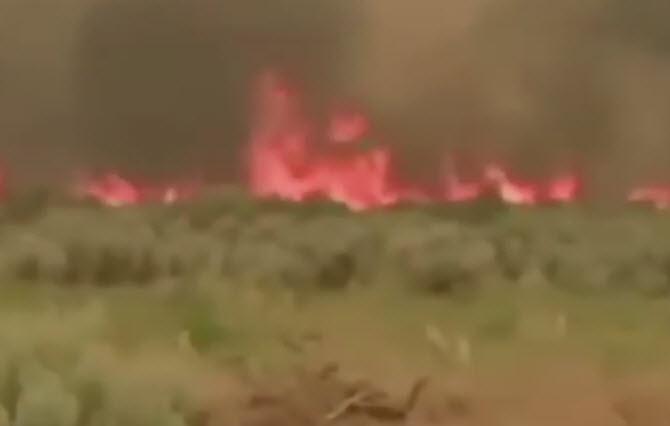 blmfire