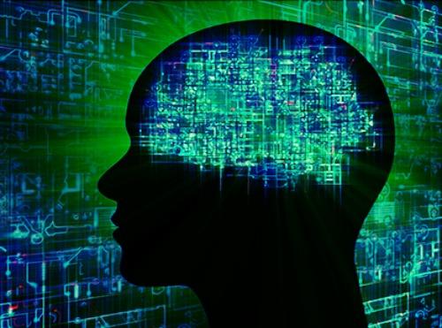 darpa-brain