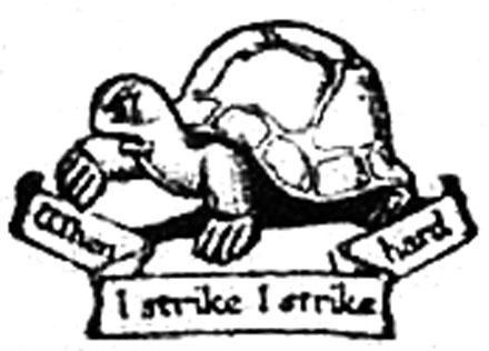 button_fabian-turtle-w440
