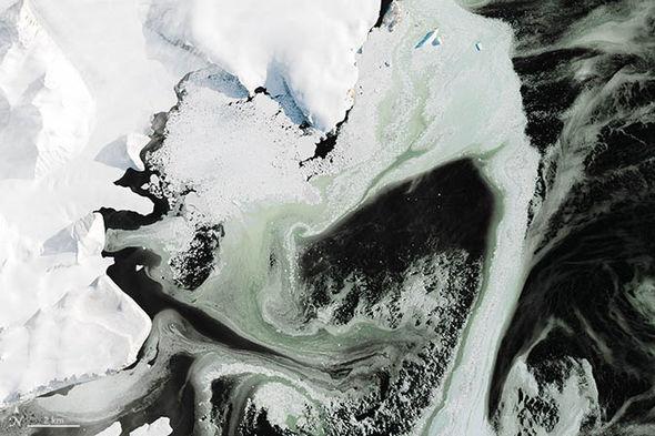 Green-ice