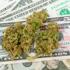 medical marijuana money cannabis