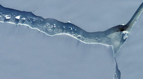 Antarctica new