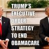 executive order obamacare