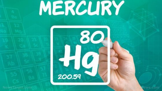 Mercury-Metal-Amalgam-Liquid-80-Atom-Atomic-e1503306756397